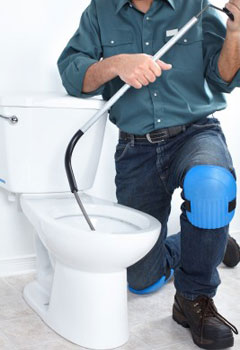 Picking A Plumbing professional